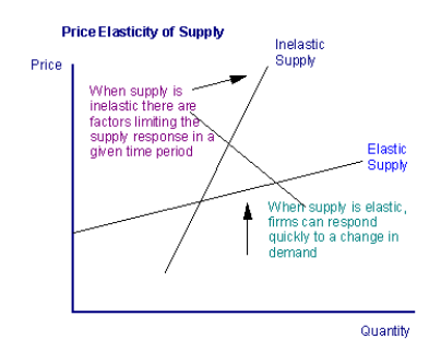 An Idiot S Guide To Price Elasticity The Story Of Demand And Supply